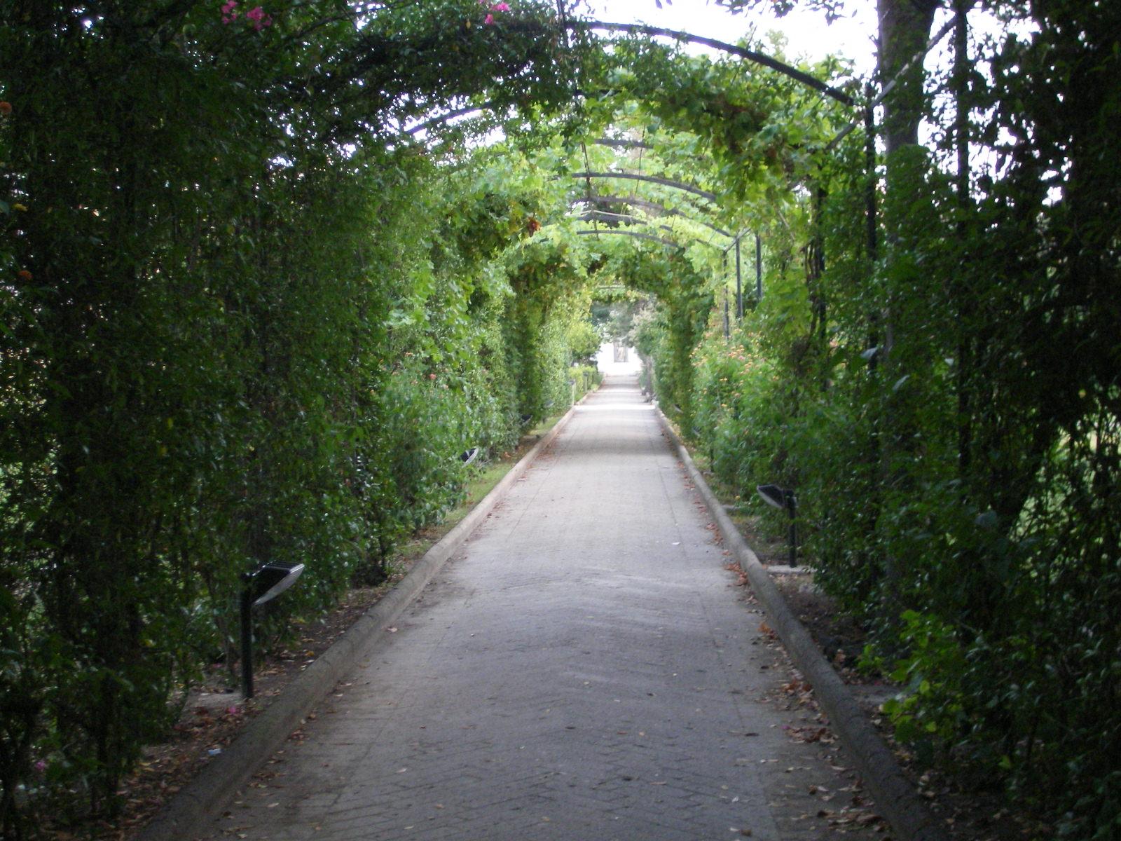 Villa-Bruno (1)